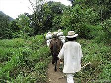 Kolumbie zájezd do Ztraceného města