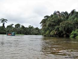 Poznávací zájezd na Kostariku Tortuguero