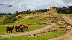 Poznávací zájezd Ekvádor Ingapirca