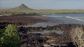 192772239-isla-seymour-norte-oceano-paci