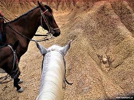 Tatacoa14 - caballos dunas.jpg
