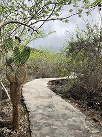 Poznávací zájezd Ekvádor, Galapágy a Amazonie