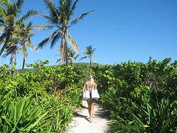 Výlet na ostrov Contoy