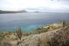 galapagos-islas-culebras-768x512.jpg