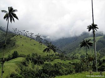 Poznávací zájezd do Kolumbie, Andy