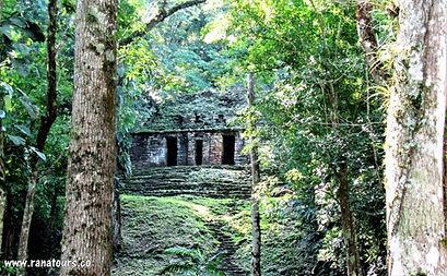 Yaxchilán / Mexiko český průvodce / zájezd do Tikalu