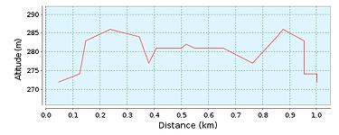 1 KM Lauf.png
