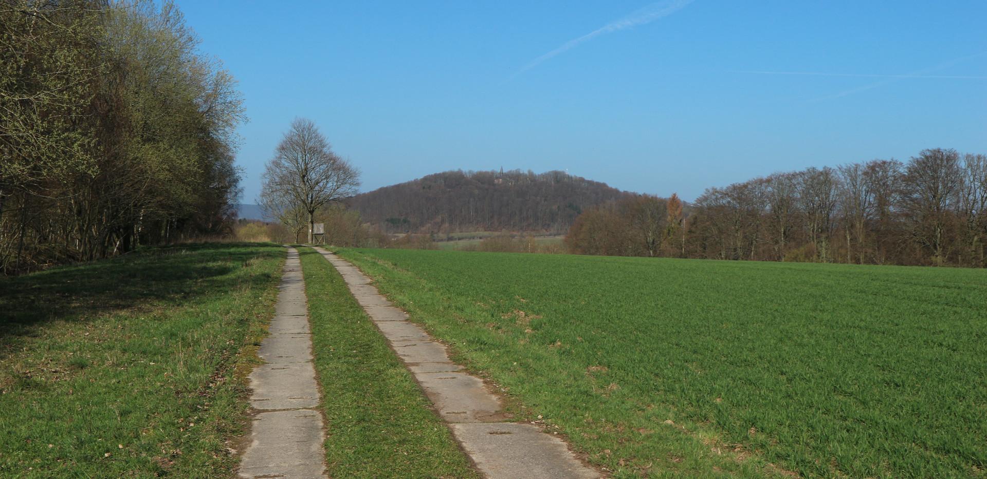 Blick auf den Hülfensberg