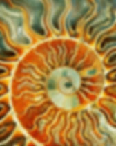 sunspiral.jpg