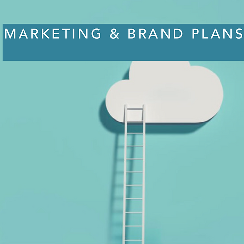 Marketing & Brand Plans