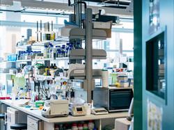 Arbeiten im Labor