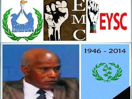 EYSC, EMC, and EMDHR Joint Statement on the Death of Mr. Ahmed Nasser