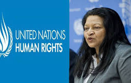 EMDHR Meets UN Special Rapporteur on Human Rights in Eritrea