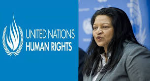EMDHR Meets UN Special Rapporteur on Human Rights in Eritrea