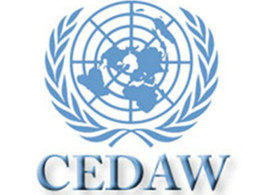 Eritrea: Shadow Report to the CEDAW Committee