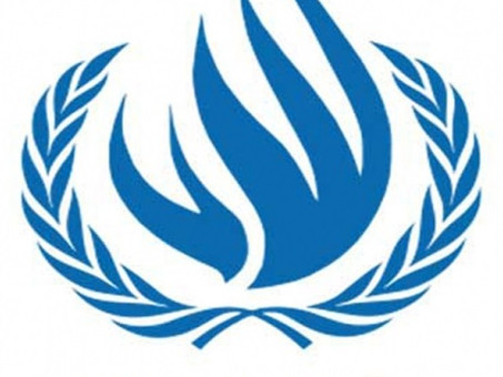 UN Human Rights Council: Civic space in Eritrea