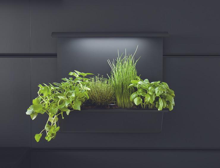 Schuller_kitchen_plant_led_sunlight_full