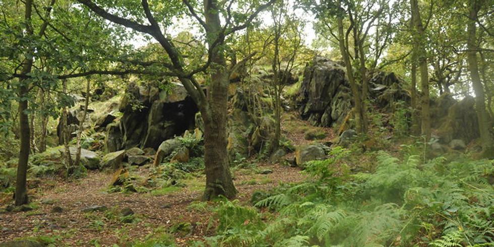 Cademan woods Thursday climbing