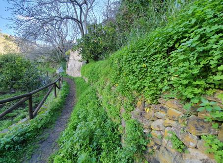Salares - round trip (trail)