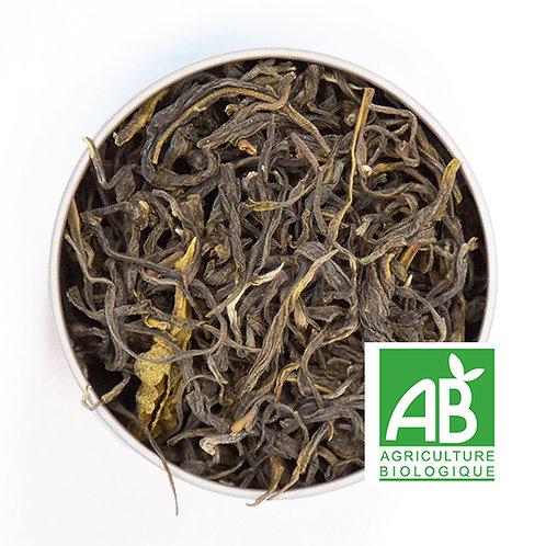 Thé vert de Colombie bio