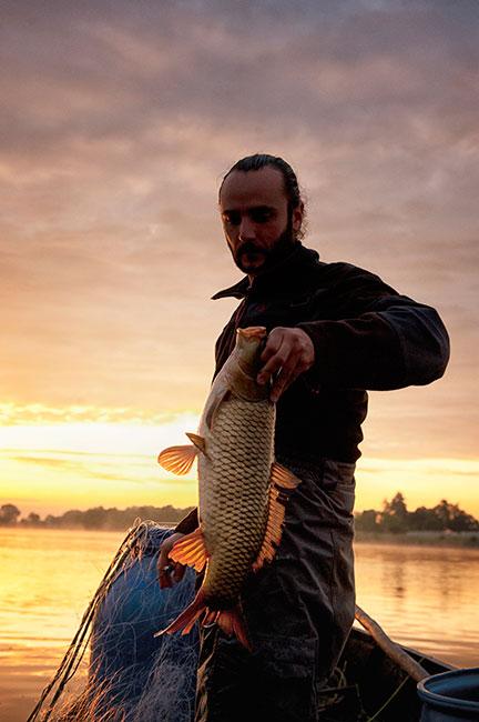 pêche de loire