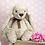 Thumbnail: Floppy Bunny with heart tin  - made to order