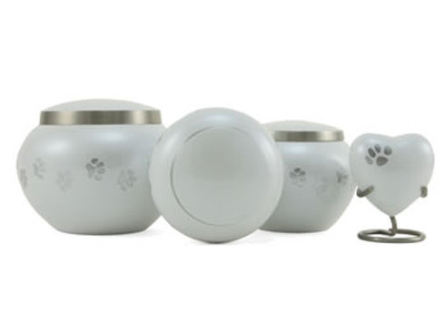 Odyssey Pearl (Pewter Paws)
