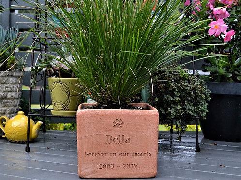 Plant Pot Pet Memorial