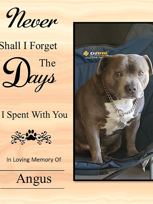 Pet Memorial  Candle Medium