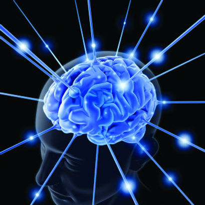 brainjpg-86d1fbc278be5d17.jpg