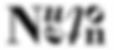 Neuton Logo kl.png