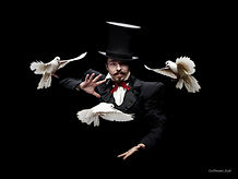 magician and doves