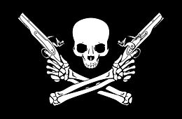 skull and cross bones with revolvers