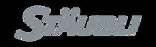 staubli-logo-1.png