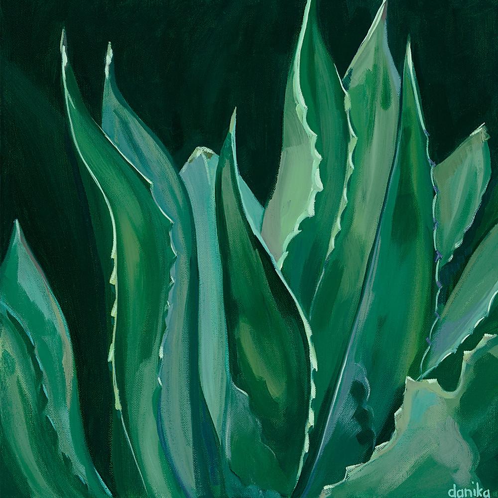 agave painting danika ostrowski