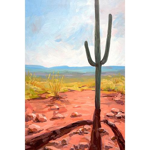 Lone Saguaro Limited Edition Print