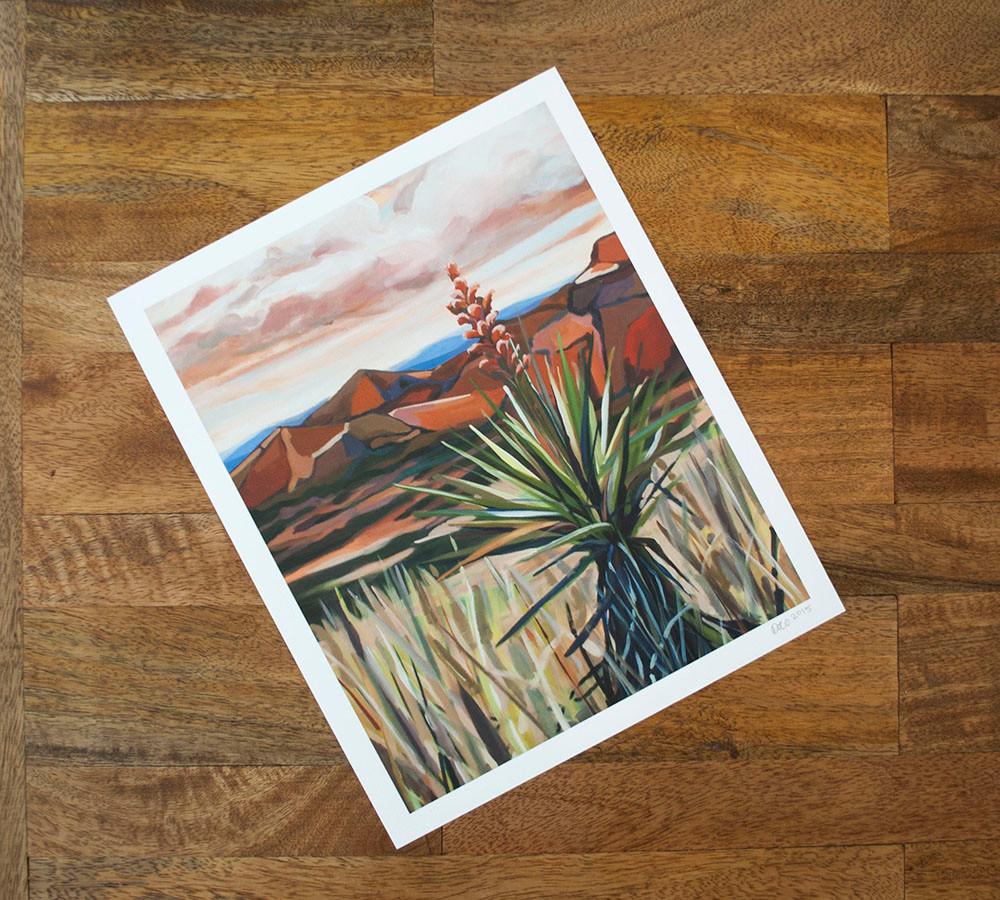 yucca big bend art danika ostrowski