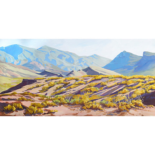 Chihuahuan Desert Limited Edition Print