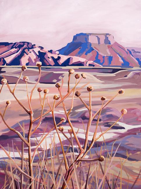Badlands Thistle