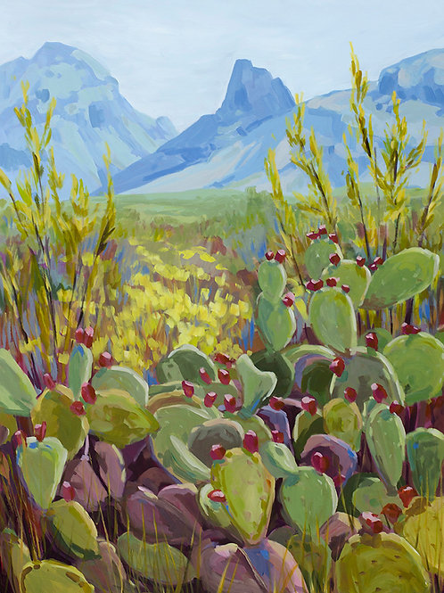 Prickly Pears in Big Bend