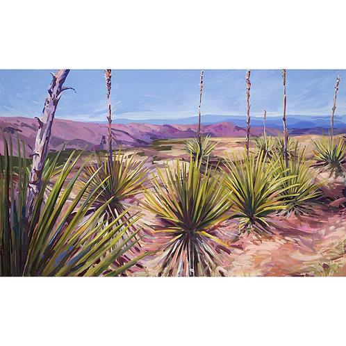 Yucca Field Print