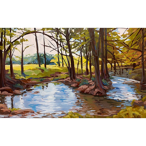 Diverging Waters Limited Edition Print