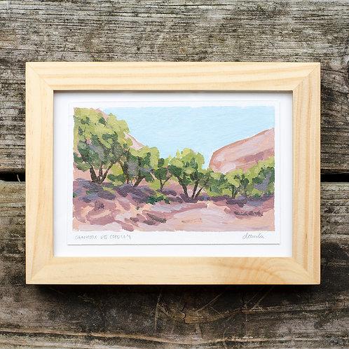 Canyon De Chelly Oasis