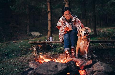 Dog Friendly Camper Van Hire