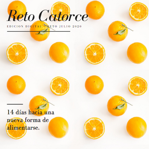Reto Catorce Vol.4