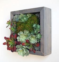 10x10 Moss Art