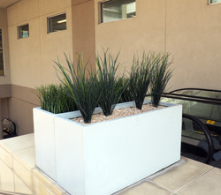 UV rated Outdoor Grasses