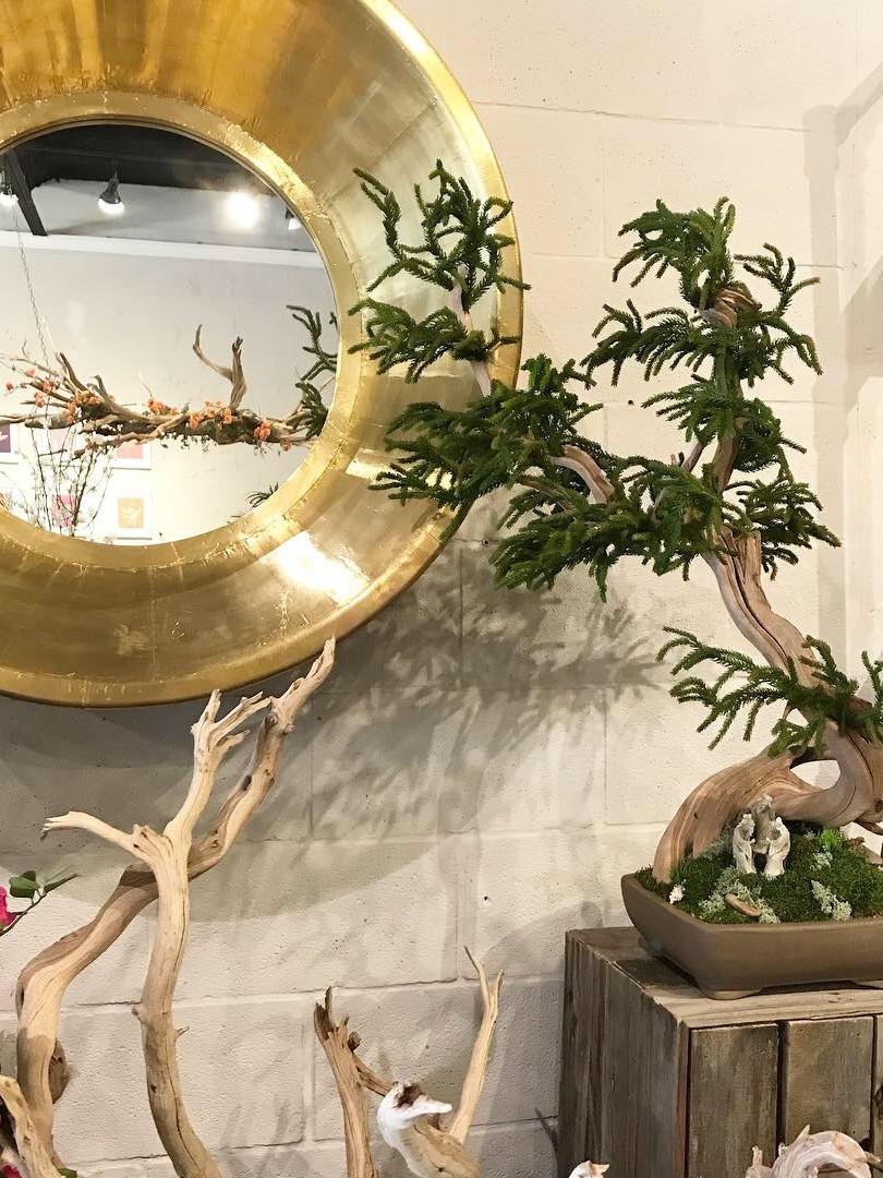 Artifical Bonsai Example