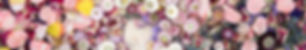 Sceint of Broq-pa 05062019.jpg
