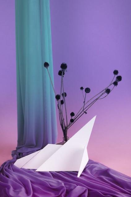 Purple Drape, 2018